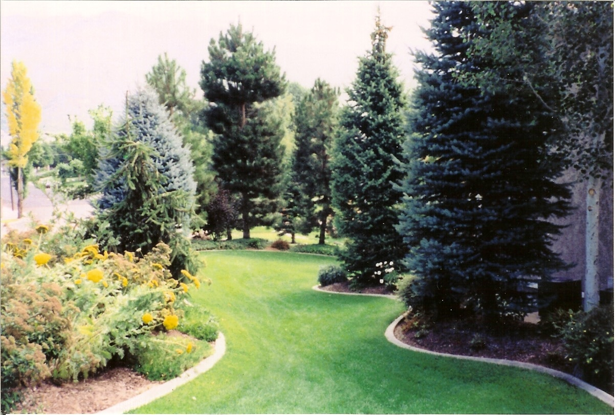 Landscape Contractor & Designer in Park City, Utah