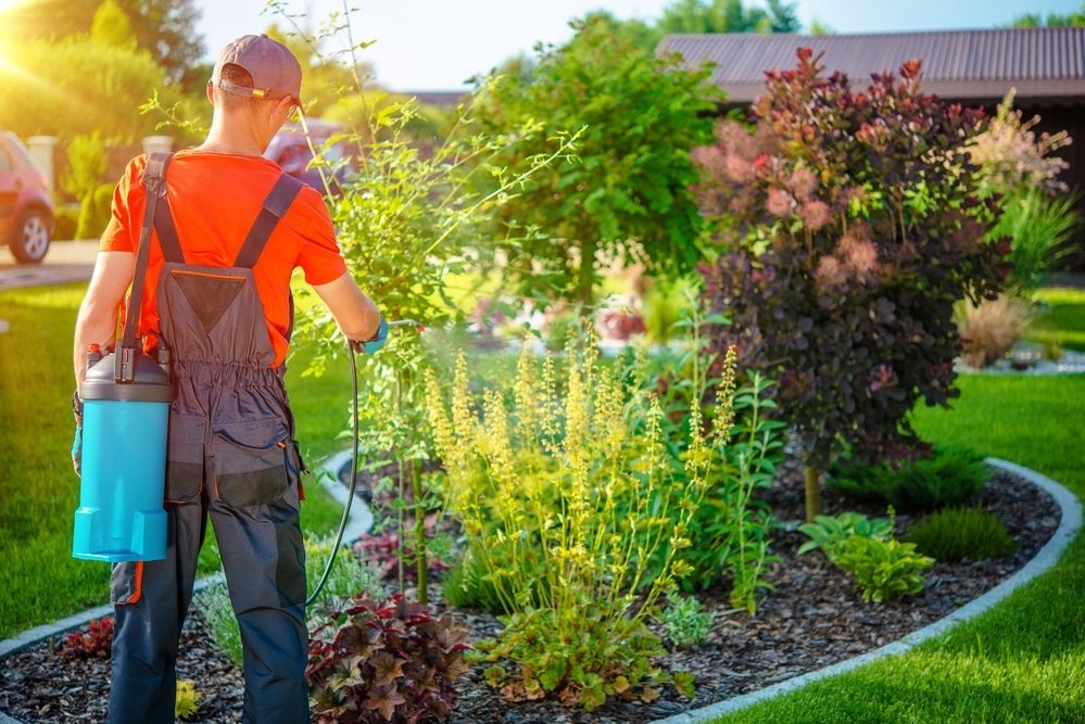 identifying limiting pests landscaping