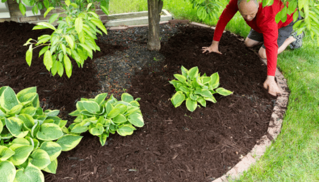 How Does Landscaping Improve My Home's Value_