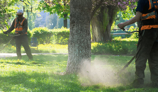 Top Fall Lawn Care Tips to Prepare for Utah's Winter