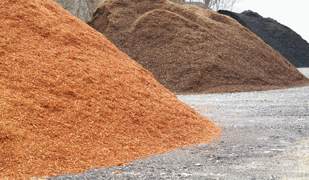 Everything-You-Need-to-Know-About-Mulch